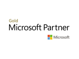 111Microsoft Gold Partner